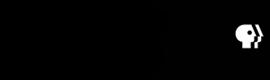 Logo wpbt2